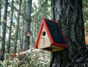Prevent forest fires with the Birdhouse Alarm