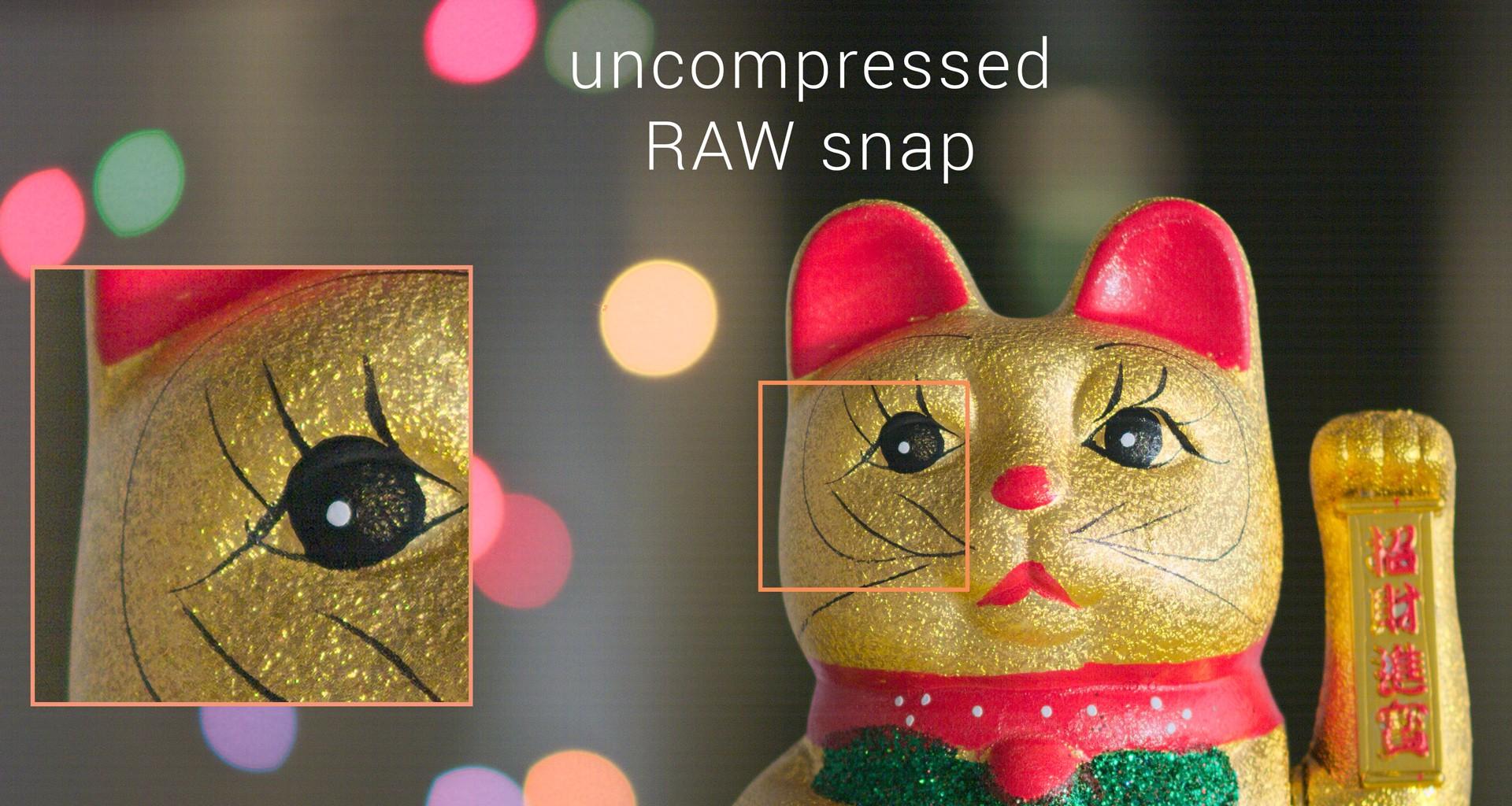 AXIOM Beta UHD Raw Workflow Explained | apertus° – open source cinema 3